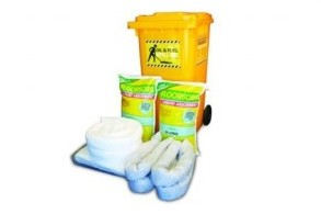 Economy Floorsorb Spill Kit