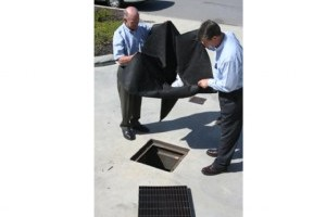 Drain warden with absorbent pillow